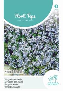 Vergeet me niet, Myosotis Alpestris Blauw (vergeetmenietjes)