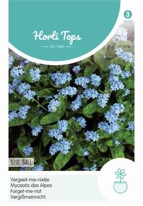 Vergeet me niet, Myosotis alpestris Blue Ball, vergeetmeniet