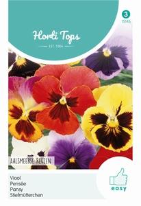 Viola Tric. Max. Aalsmeerse Reuzen K.S.