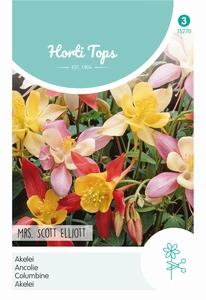 Aquilegia Hybrida Mrs Scott Elliott