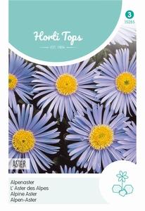 Aster Alpinus Lichtblauw