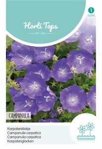 Campanula Carpatica Blauw