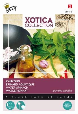 Kankong Tong Chuai Dagoeblad