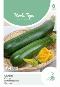 Courgette Black Beauty - Verte De Milan