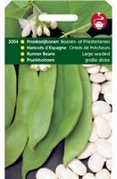 PRONKSNIJBONEN Boerentenen  100 gram