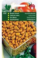 STAMBONEN bruine Noordhollandse  100 gram