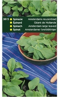 SPINAZIE Amsterdams reuzenblad  OP=OP  250 gram