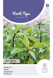 Basilicum Siam Queen