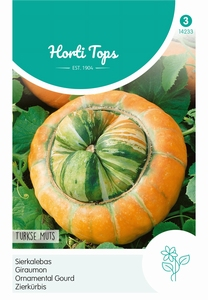 Cucurbita Turbani.Turkse Muts  (pompoenachtige)
