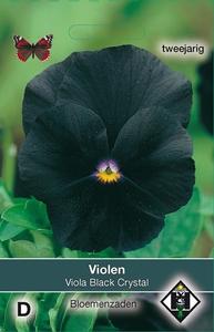 Viola x wittrockiana Black Cristal