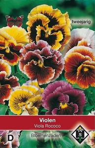 Viola x wittrockiana Rococo