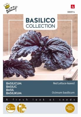Basilicum slabladig paars, Basilico