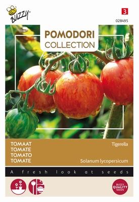 Tomaat Tigerella, rood met groene strepen