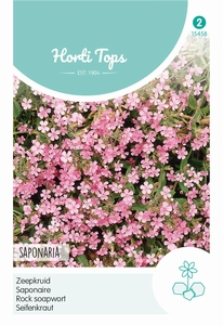 Saponaria Ocymoides (Zeepkruid) Rose