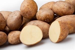 Frieslanders zeer vroege aardappel, vastkoker 1 kg