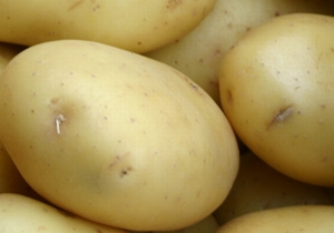 Santé middelvroege aardappel, bloemig 1 kg