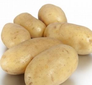 Annabelle zeer vroege aardappel, vastkoker 2,5 kg