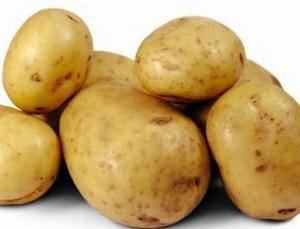 Doré vroege aardappel, 2,5 kg