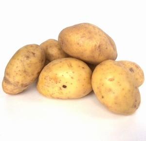 Agria middellate aardappel, kruimige 2,5 kg