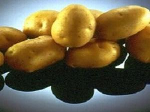 Eba  aardappel laat, Bloemig kruimelig 1 kg