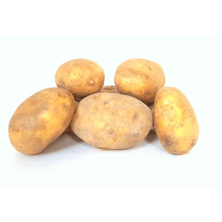 Bio aardappel   Frieslander vroeg, vastkoker 1 kg