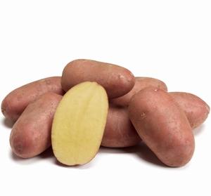 Bio aardappel, Alouette (rode) vrij laat vastkoker 1 kg