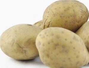Bio aardappel  Carolus  (gele) midvroeg, kruimig 1 kg