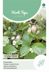 Aardbeien Yellow Cream
