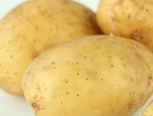 Solist, zeer vroege lekkere aardappel, vastkoker 2,5 kg
