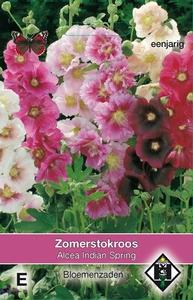 Alcea rosea annua Indian Spring