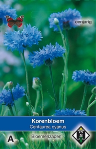 Centaurea cyanus enkele blauw