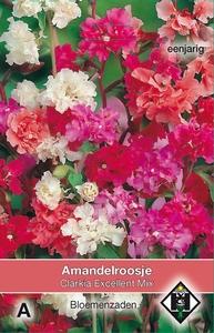 Clarkia unguiculata Excellent Mix