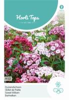 Dianthus barb. nanus compactus Dubbel gemengd