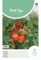 Tomaten Maja -Balkontomaat