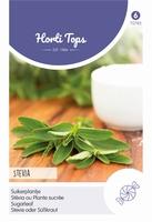 Stevia suikerplantje