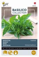 Basilicum kleinbladig, Basilico