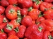 Aardbeiplanten  type:  Elsanta A+  vroeg   per 10 Stuks