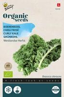 Bio Organic Boerenkool Westlandse  (BIO)