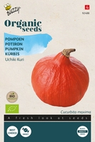Bio Organic Pompoen Uchiki Kuri  (BIO)