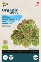 Bio Organic Krulsla Lollo rossa  (BIO)
