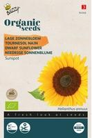 Bio Organic Helianthus annuus type Sunspot  (BIO)