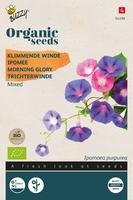 Bio Organic Ipomoea purpurea gemengd  (BIO)