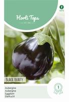 Aubergine Black Beauty    NIEUW