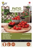Tomaat Gourmandise Red   Patio Veggie  -  NIEUW