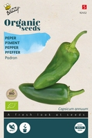 Bio Organic Peper Padron (BIO)