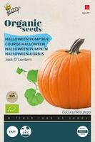 Bio Organic Pompoen Jack O'Lantern  (BIO)