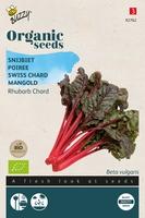 Bio Organic Snijbiet Rhubard Chard  (BIO)
