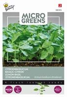 Microgreens Citroenbasilicum    NIEUW