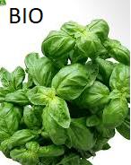 Bio Kruidenzaden